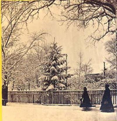 Winterpubgarden